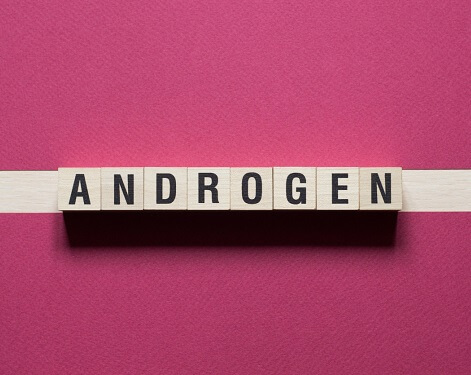 Do Androgens Increase Testosterone Levels